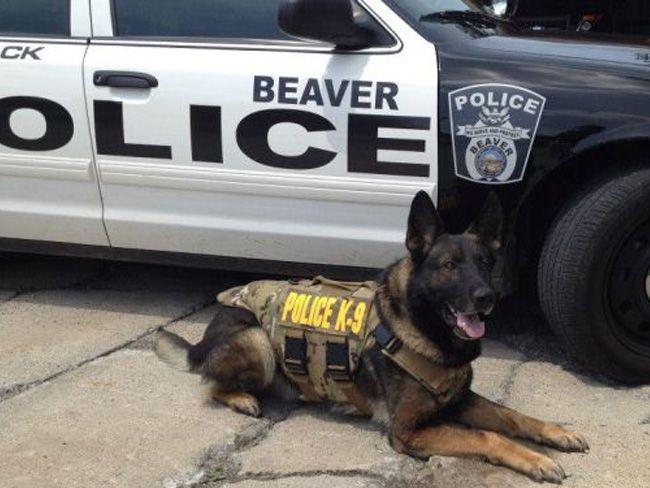 Beaver Police
